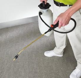 cuidado de alfombras